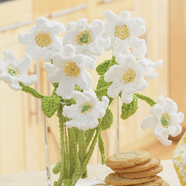 Lily Sugar'n Cream Daisy Bouquet