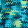Caron Simply Soft Paints Yarn, Peacock Feather
