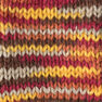 Caron Simply Soft Paints Yarn, Sunset Autumn