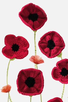 The Poppy Project Blog