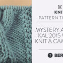 Mystery Afghan KAL 2015 Week 5:  Knit a Cam Cable