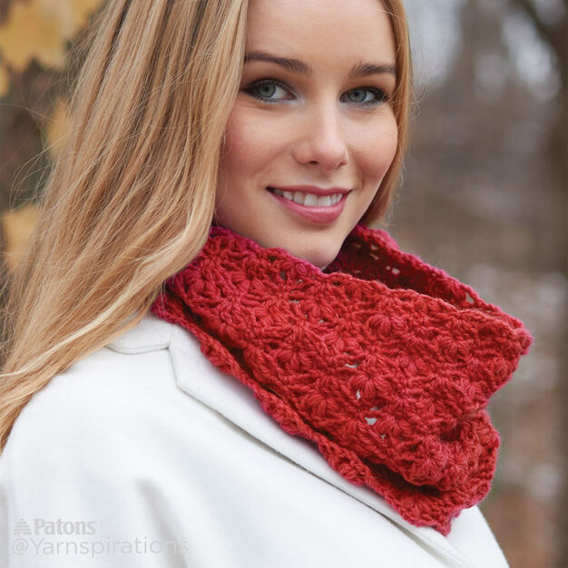 Patons Cluster Stitch Crochet Cowl in color
