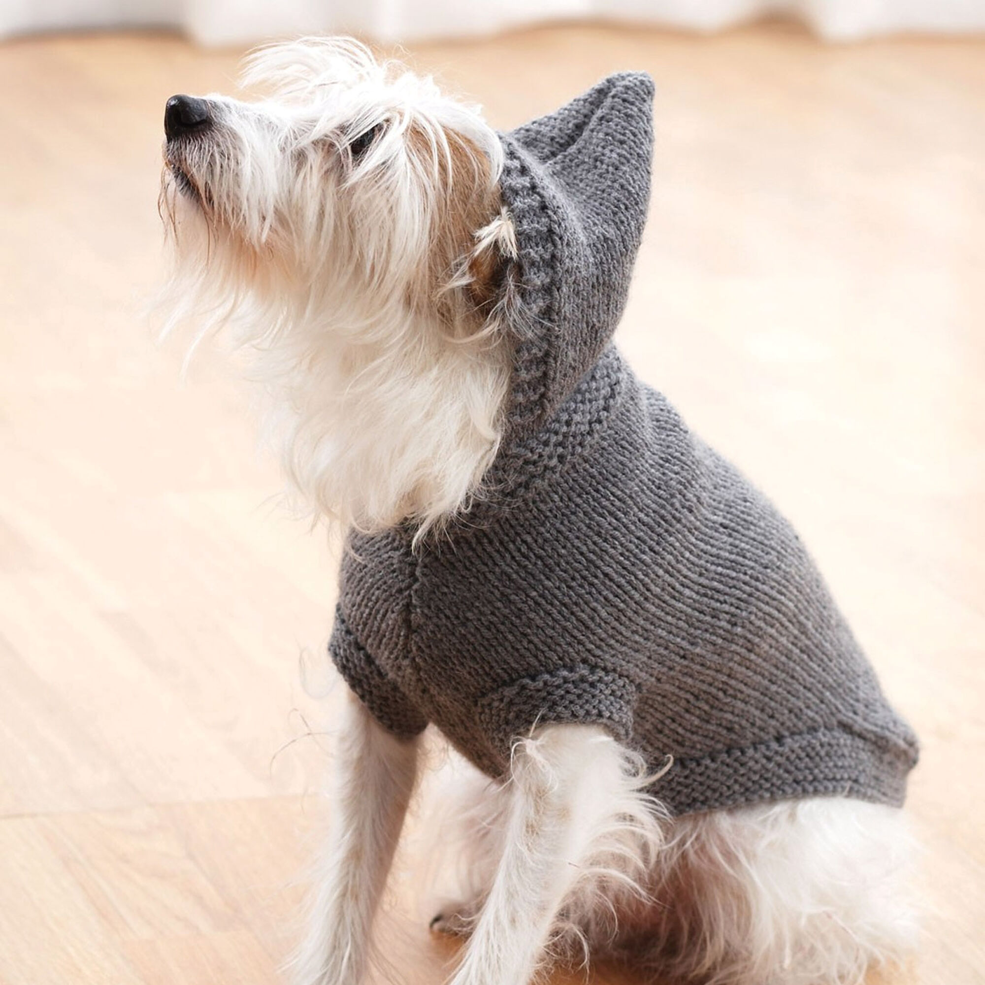 Bernat Hoodie Dog Coat S Yarnspirations