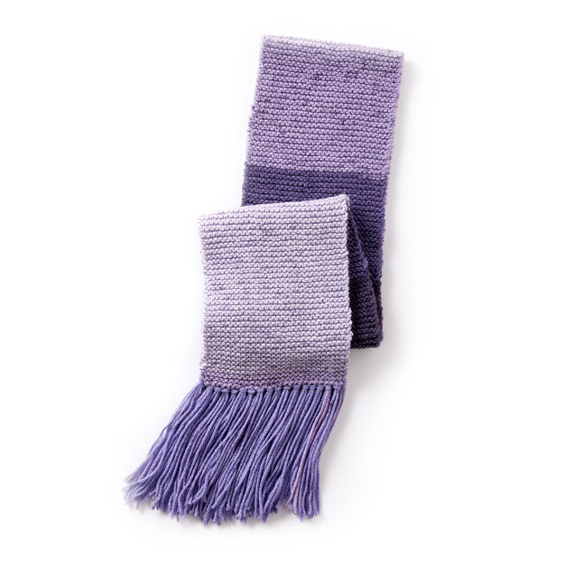 Caron Cakes Basic Knit Scarf in color