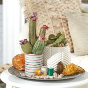 Go to Product: Dual Duty Cactus Garden in color