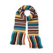Caron x Pantone Earthy Stripes Crochet Scarf
