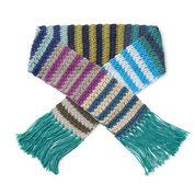 Caron x Pantone Crochet Stripe Scarf