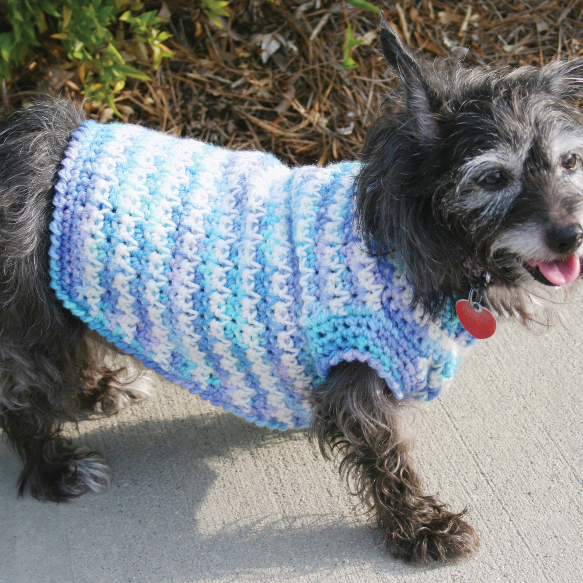photo regarding Dog Coat Sewing Patterns Free Printable called Purple Middle Crochet Puppy Sweater Yarnspirations