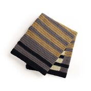 Go to Product: Bernat Layers of Stripes Crochet Blanket​ in color