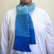 Red Heart Special Olympics Rib Knit Scarf with Stripes