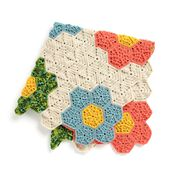 Go to Product: Caron Crochet Flower Patch Throw in color