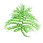 Go to Product: Red Heart Decorative Ferns in color
