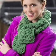 Go to Product: Red Heart Colleen's Scarf in color