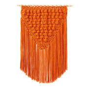 Go to Product: Bernat Popping Fringe Crochet Wall Hanging in color