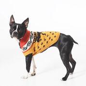 Bernat Cowichan Style Dog Coat, S