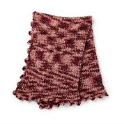Go to Product: Bernat Fanfare Crochet Afghan in color