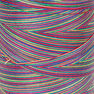 Coats & Clark Cotton Machine Quilting Multicolor Thread 1200 yds, Over The Rainbow in color Over The Rainbow