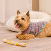 Go to Product: Red Heart La-di-da Dog Sweater, S in color