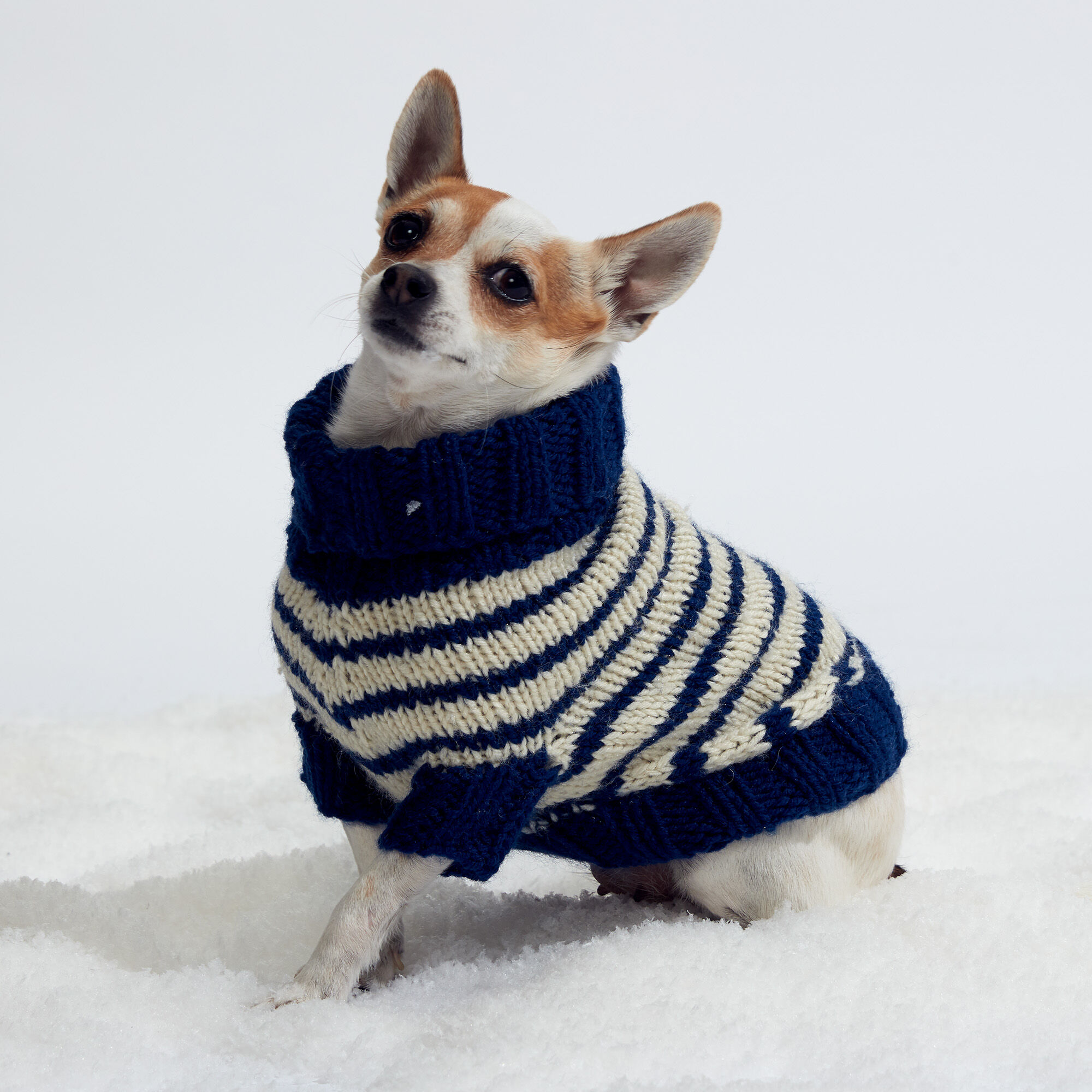 Red Heart Striped Knit Dog Coat, S | Yarnspirations