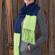 Go to Product: Caron Bold Stripes Scarf in color