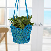 Red Heart Blooming Beauty Plant Hanger