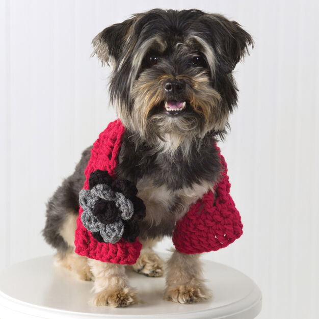 Red Heart Doggie Shrug, S in color