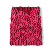 Go to Product: Caron Burning Up Brioche Knit Cowl in color