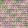 Caron Simply Soft Paints Yarn, Rose Garden