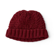 Red Heart Knit Basketweave Set For Him, Hat