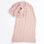 Go to Product: Red Heart First-Timer Knit Lace Scarf in color