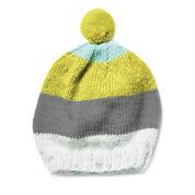Caron Knit Cap