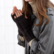 Go to Product: Bernat Fingerless Gloves in color