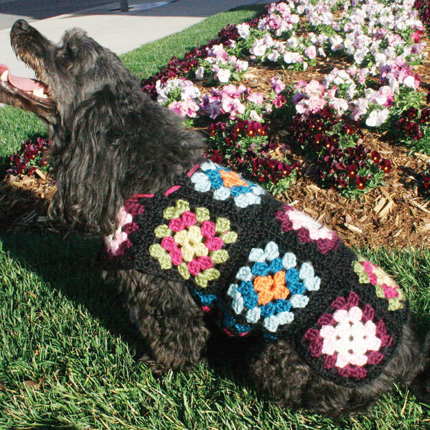 Red Heart Dog's Crochet Granny Square Sweater, S