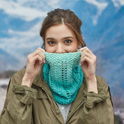 Go to Product: Red Heart Cozy Lace Cowl in color