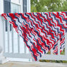 Red Heart American Waves Throw in color