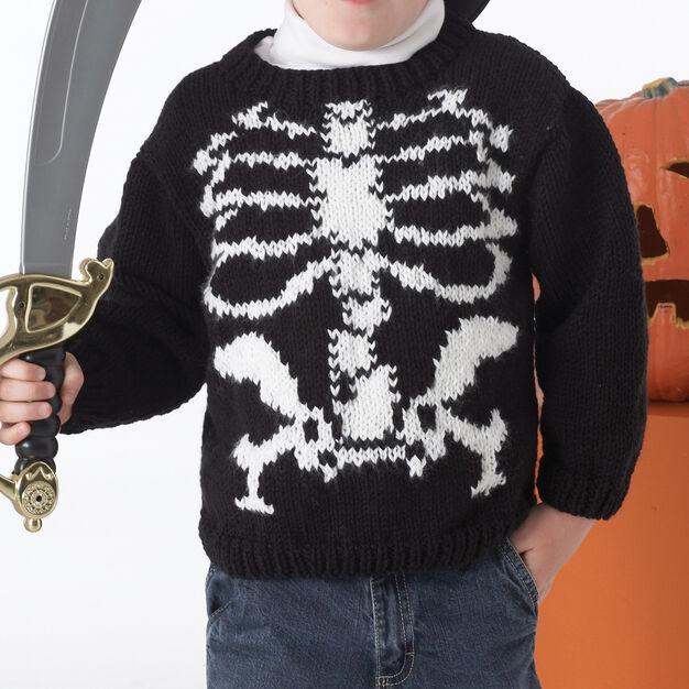 Bernat Skeleton Sweater, 2 yrs in color