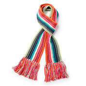 Caron x Pantone Long Stripes Crochet Scarf