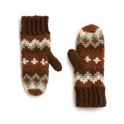 Go to Product: Patons Winter in Vermont Crochet Mittens in color