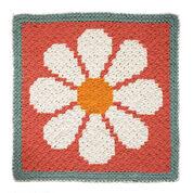 Bernat Daisy C2C Crochet Blanket