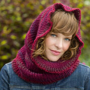 Go to Product: Red Heart Cowl Hood Warmer in color