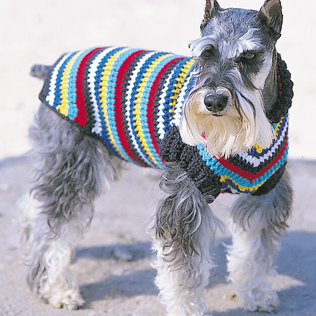 Bernat Crochet Dog Coat, S in color