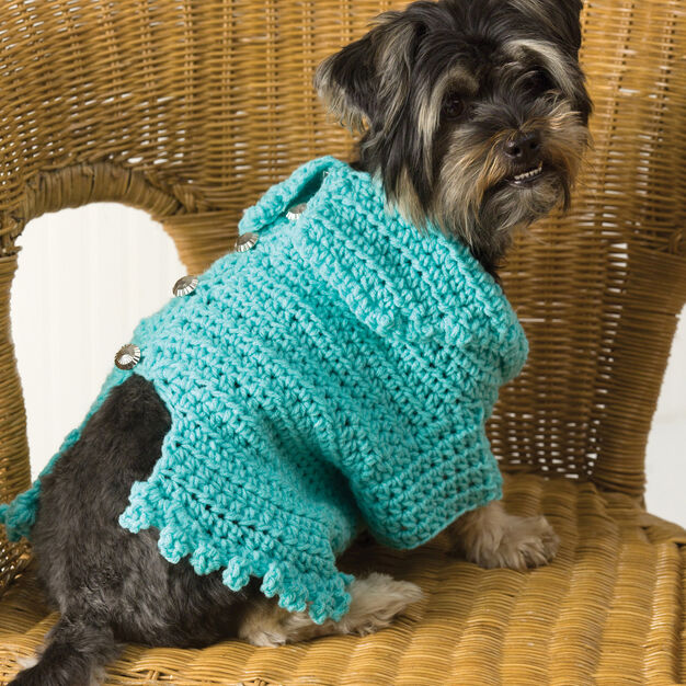 Red Heart Doggie Snuggle-Up Sweater, XS in color
