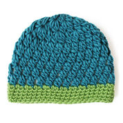 Go to Product: Patons Snug with Clusters Hat in color