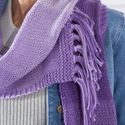 Go to Product: Red Heart Simple Ombre Knit Scarf in color