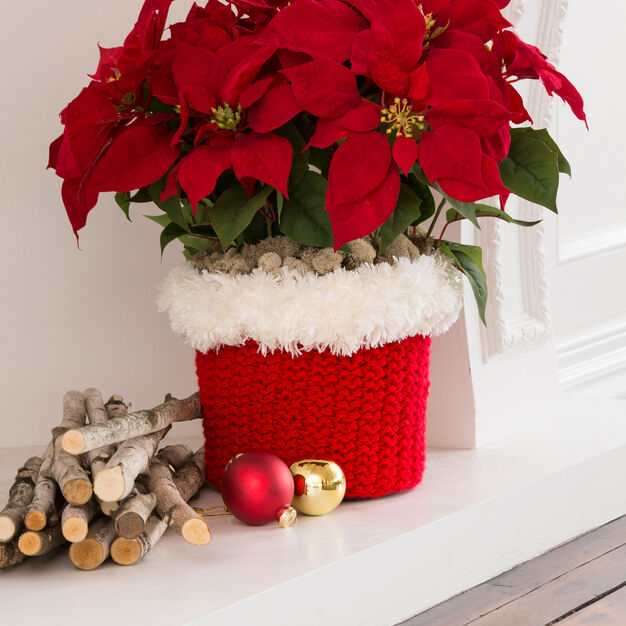 Red Heart North Pole Pot Cozy in color
