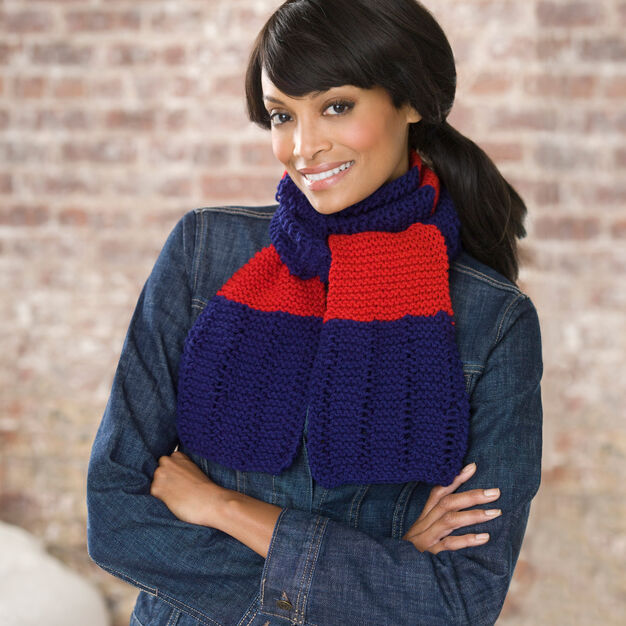 Red Heart Simple Knit Scarf in color