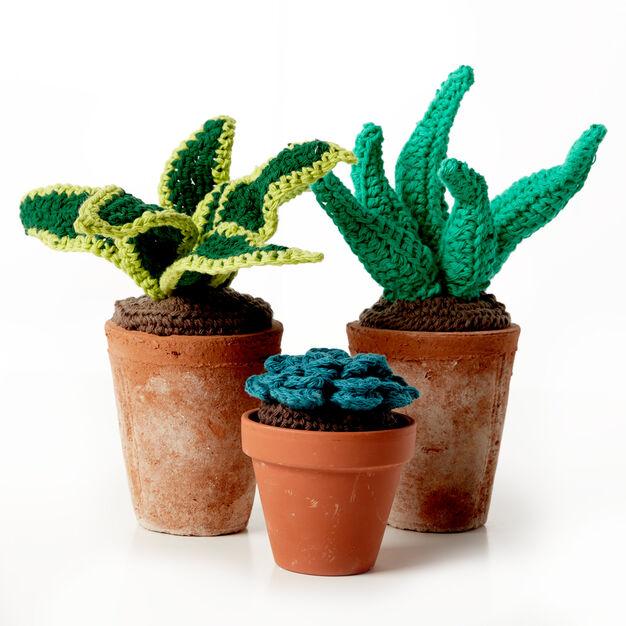 Lily Sugarn Cream Crochet Succulents Soil Pattern Yarnspirations