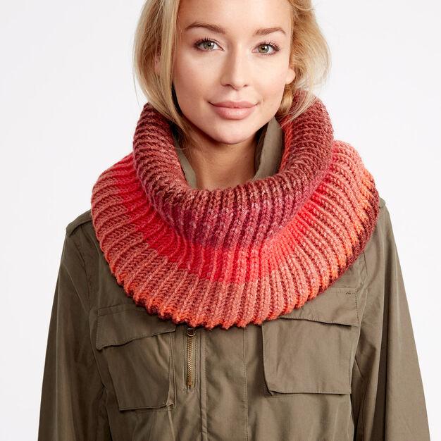 Caron Cakes Cozy Rib Knit Cowl in color