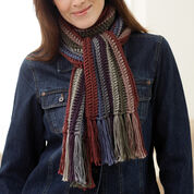Go to Product: Bernat Striped Scarf in color