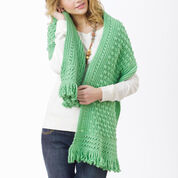 Go to Product: Caron Friendship Shawl in color